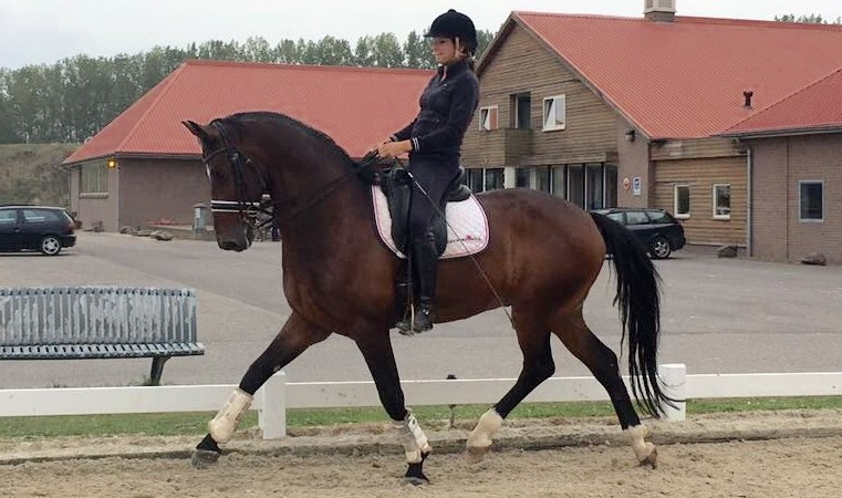 Super training in de voorbereiding van de Grand Prix as week