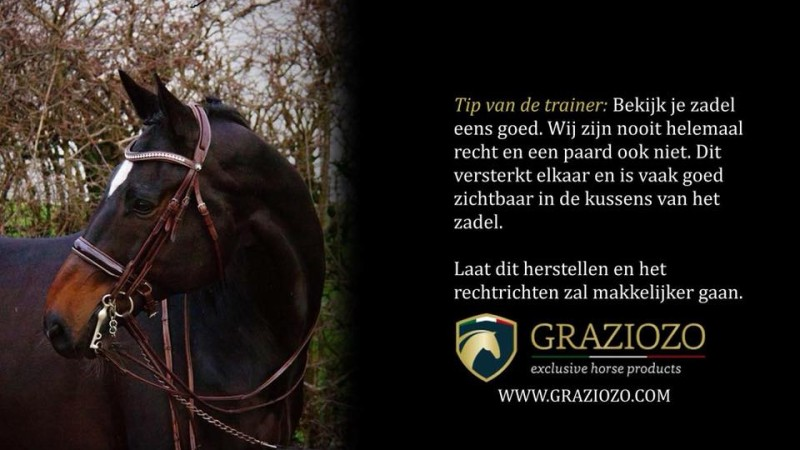 Tips van de trainer