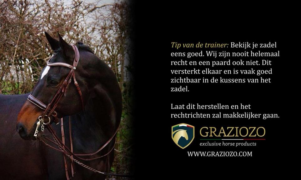 Tips van de trainer dressuur